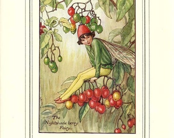 The NIGHTSHADE BERRY FAIRY  Original Antique c 1940 Color Plate The Book of Flower Fairies Cicely Barker