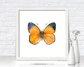 Orange Butterfly Painting, Butterfly Art, Butterfly Print, Original Butterfly Watercolor, Butterfly Greeting Cards, 19 Delias Anuna