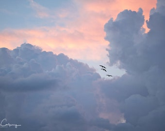 Storm Clouds, fine art photo, signed by me