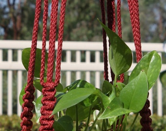 RINGMASTER - Handmade Macrame Plant Hanger with Wood Beads - 6mm Braided Poly Cord in WINE Red