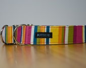"""Whipple, large, 1.5"""" wide martingale (greyhound) collar, extra strong, stripes striped, pitbull, bully"""