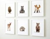 Woodland nursery art, baby forest animals, set of six unframed prints - childrens nursery artwork, raccoon. fox, owl, deer, bear, hedgehog