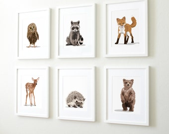 Woodland nursery art, baby forest animals, set of six unframed prints - childrens nursery artwork, raccoon. fox, owl, deer, bear, hedgehog