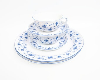 Vintage ARZBERG GERMANY Blue Flowers Floral Dinnerware Dinner Plates Flat Cup Saucer 2 Sets Blue and White Wedding Gift Shower Present
