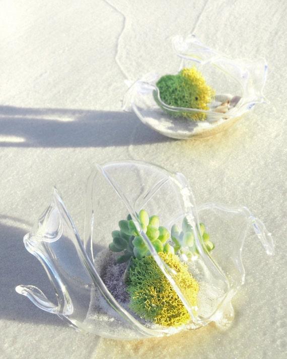 Beach Theme Wedding Photo Albums : Beach wedding favor blown glass