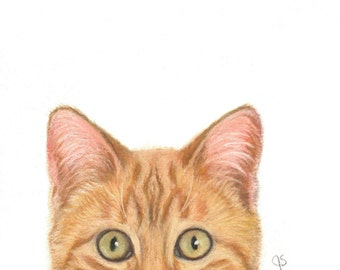 Cat Art, Orange Cat Art, Orange Tabby Cat, Orange Cat Peek A Boo