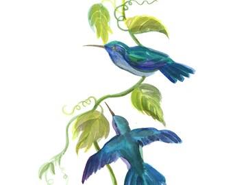 Sapphire Blue Birds