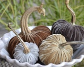 Set of 4 Warm Neutrals Silk Velvet Pumpkins with Real Stems
