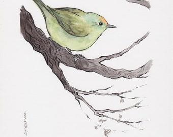 Original Green Bird Watercolor Painting