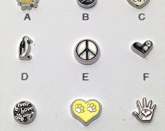 1 Floating charm of your choice #MIN CH 016