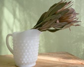 Milk Glass Hobnail Pitcher.  Small Water or Milk Pitcher.  Collectible Hobnail Milk Glass Serving Dish.