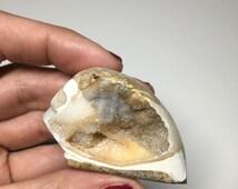 Druse Filled Spiral Seashell