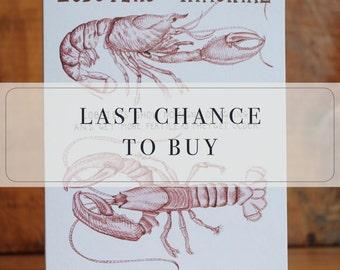 Lobster science birthday greetings card - immortal joke humourous ageing sea ocean seaside crustacean crab beach