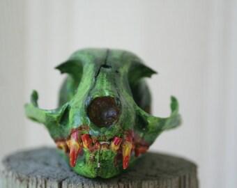 Zombie Cat Skull Replica 001