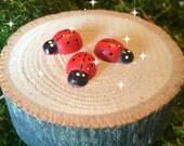 Fairy garden, miniature garden, 3 tiny ladybugs, fairy garden ladybug, miniature ladybug, ladybugs, mini ladybugs, fairy bugs