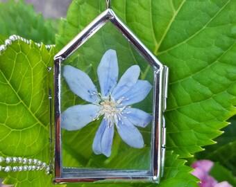 Purple Larkspur Botanical Necklace. Terrarium. Floating Locket. Nature Lovers.