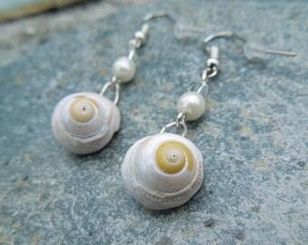 Cornish seashell earrings
