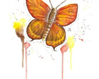 Butterfly - Art Print (Digital)