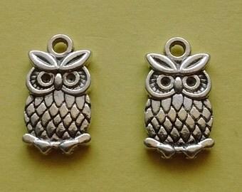 10 pc Owl Charm - CS2277