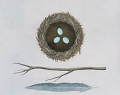Building A Nest 1 - Archival 8x8 Art Print - Contemporary Nature Painting - Bird, Eggs - by Natasha Newton