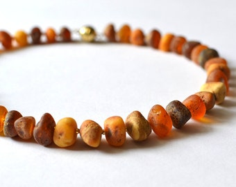 Natural Amber Necklace / Baltic Amber Jewelry / natural Gift for Her / Gold and Amber