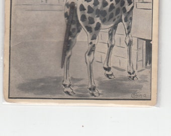 Giraffe With Wire Tail Is Looking For You 1912 Scmidt Brothers Antique Postcard
