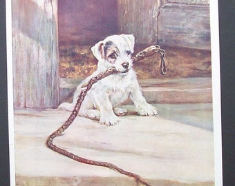 The Terrior Puppy illustration