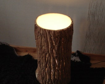 Tree trunk with light wood