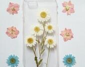 iPhone 6 Case, iPhone 6 Plus Case Clear, Pressed Flower iPhone 6 Case, Clear iPhone 6 plus Case, iPhone 6 Plus Case,daisy iphone 6 case