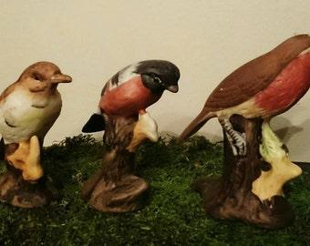 Porcelain Bird Figurines Lot of 3 Vintage Three Little Birds Circa 1970's Made in Taiwan Aviary Home Decor Robin Mistle Thrush BullFinch