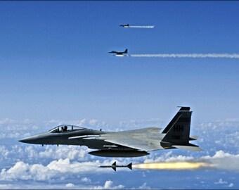 24x36 Poster . F-15A Eagle F-15 Hawaii Air National Guard, Aim-7 Sparrow