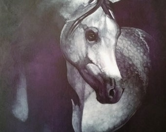 Dapple grey horse portrait