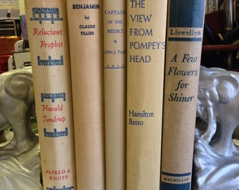 Instant Library Vintage Brown and Blue Book Collection