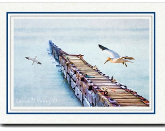 Photo Greeting Card, Northern Gannet, OOAK Handmade Card, Bird Wall Art, All Occasion Card, 5x7 Blank Card, Photo Note Cards, Fine Art Print