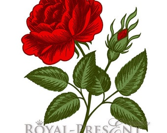 Machine Embroidery Designs - Vintage rose flower engraving calligraphic Victorian style