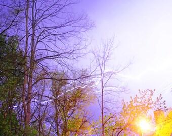 Live Lightning Bolt Rain Storm Lanscape Art Fine Art Photography 8X10