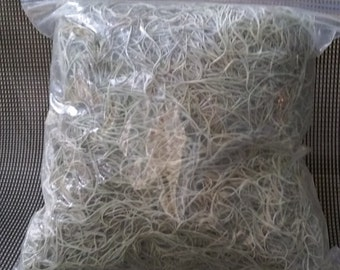 10oz-Live Florida Grown Spanish Moss