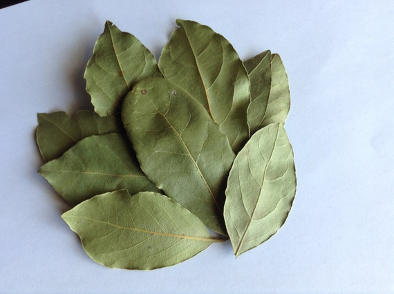 1/2-2 oz Whole Organic Bay Leaves Laurus Nobilis With Easy Crock Pot Beef Stew Recipe