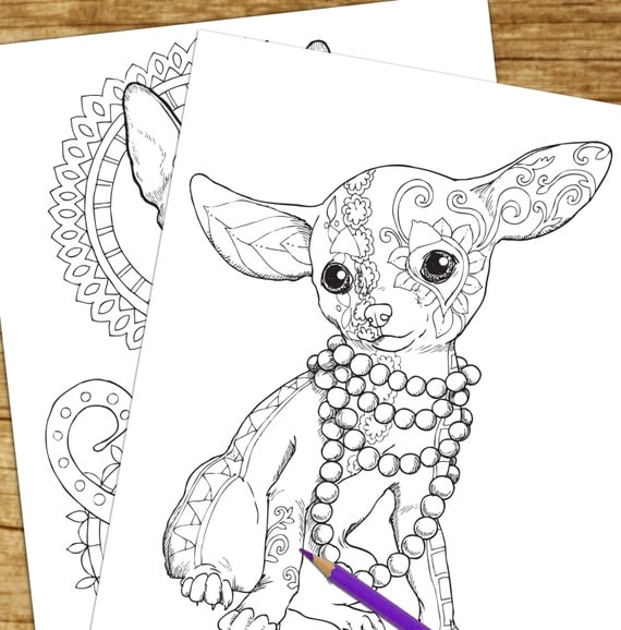 in addition  besides  further  likewise il 570xN 1039214392 eewh further  as well  furthermore dog 2 01 pkf wp4 as well chorkie additionally  as well . on chihuahua dog coloring pages for adults