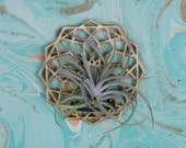 Air plant holder. Air plant hanger. Air plant. Hanging air plant holder. Geometric Terrarium. Air planter. Air plant wall holder. Tillandsia