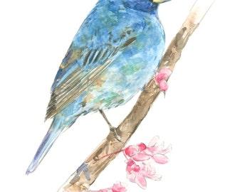 Indigo Bunting watercolor painting - bird watercolor painting - 5x7 inch print - 0065