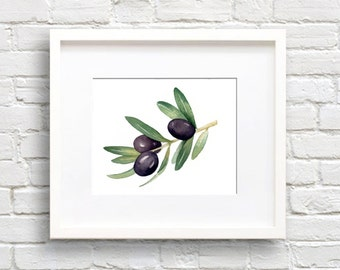 Olive Branch Art Print - Wall Decor - Watercolor Painting