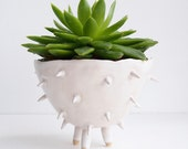SOLD OUT white ceramic spiky cactus planter, ceramic cactus planter, white plant pot, succulent planter, flower pot, white pottery planter