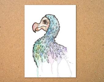 Dodo Original