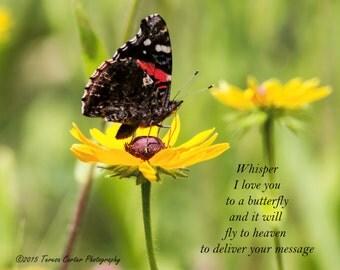 Butterfly Whispers-Fine Art, Wall Art, Mother's Day, Butterflies, flowers, daisy, Motivational,