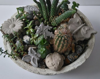 Plant Toppers