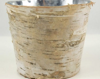 Rustic Birch Bark With Zinc Inside 5.5 in Tall