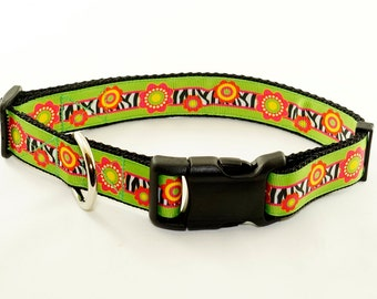 "Think Spring Dog Collar (1"" width) - Leash - Large"