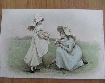 Vintage Misch & Stock postcard Girls picking Flowers 1904