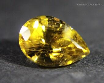 Sinhalite, faceted, Sri Lanka.  1.54 carats.